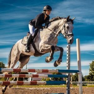 Marbella Club Hills' Equestrian lifestyle