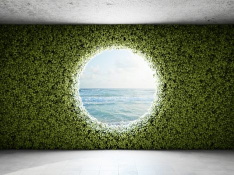 Vertical garden with views on the sea