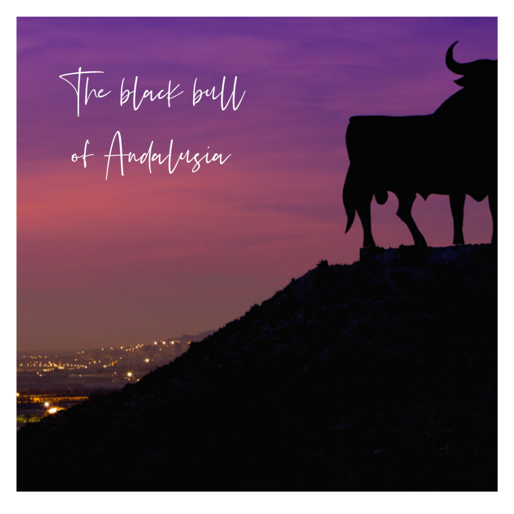Black bull at sunset Andalusia